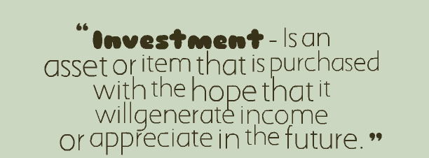 What is Investment 1